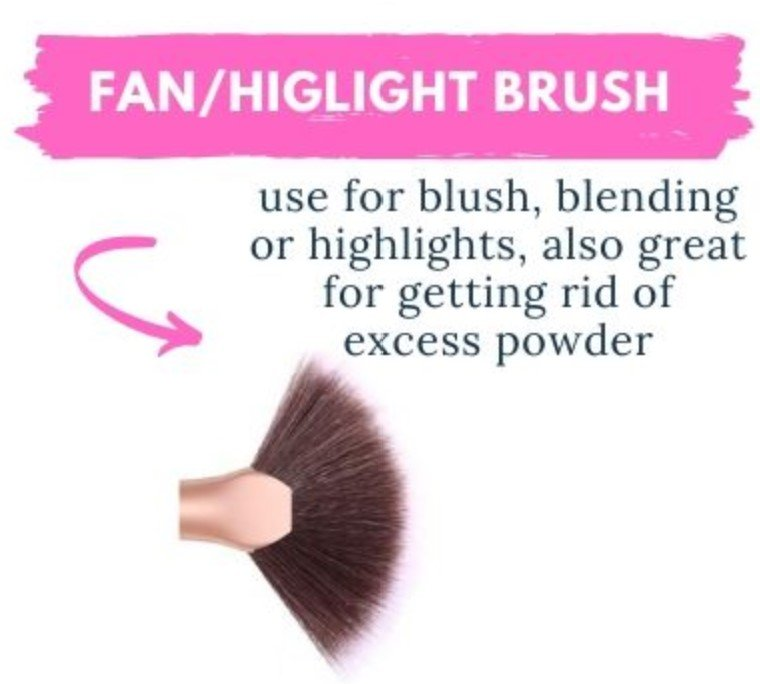 basic types of makeup brushes and how to use them